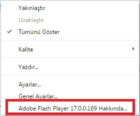 Flash İçerik Konrolü